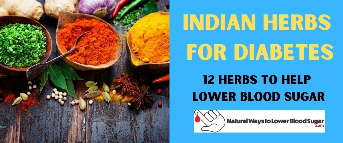 Indian Herbs and Spices Featured Image