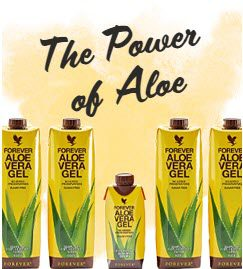 Is Forever Living MLM - Aloe Vera