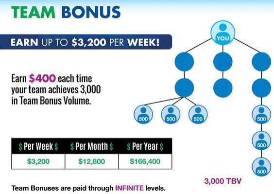 First Fitness Nutrition MLM Review - team bonus
