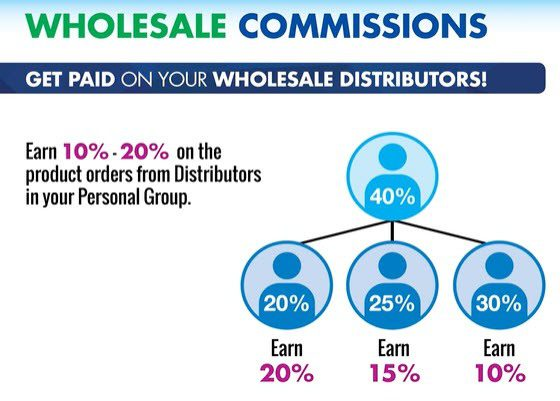 First Fitness Nutrition MLM Review - wholesale commissions