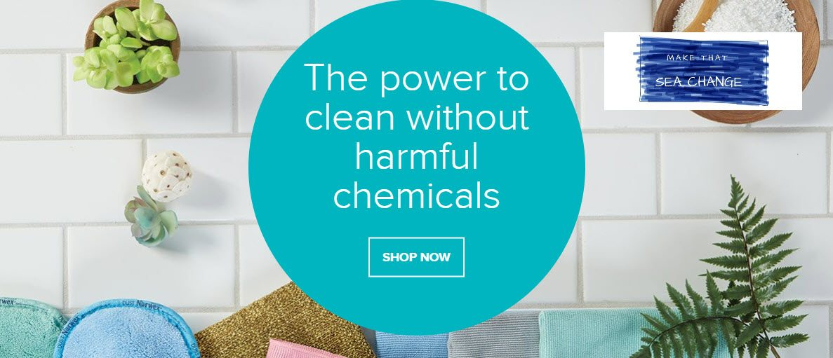 Norwex MLM Review - Header