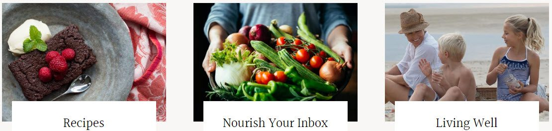 Health Food Affiliate Programs - Well Nourished stripe