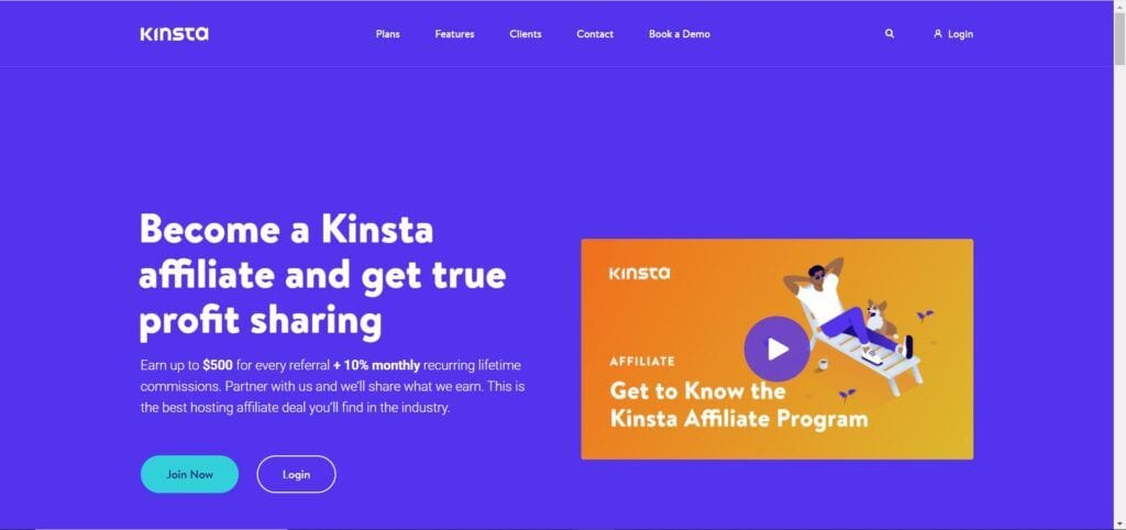 web hosting affiliate programs - Kinsta stripe