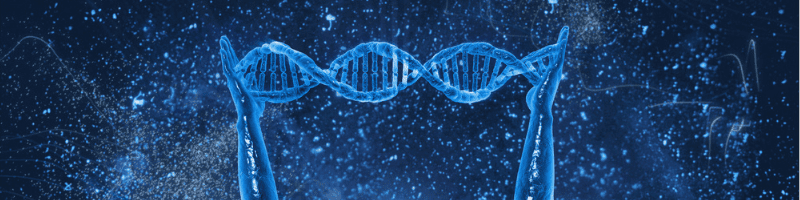 The Relationship Of DNA On Aging-Fountain Of Youth arms holding DNA
