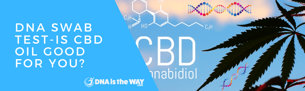 DNA Swab Test-Is CBD Oil Good For You? feature image