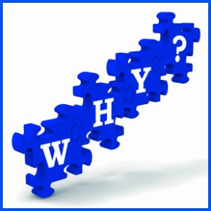 BLUE puzzle pieces with the word why on them in white