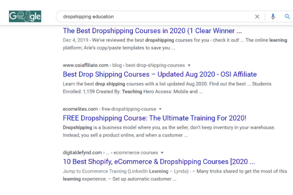 google search dropshipping business