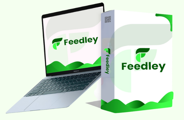 feedley review mock up